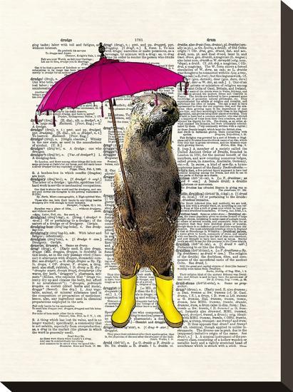Rainy Day Otter-Matt Dinniman-Stretched Canvas Print