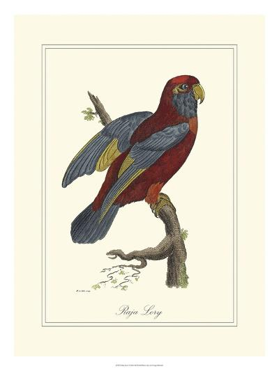 Raja Lory-George Edwards-Art Print