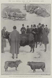 The 104th Annual Show of the Smithfield Club by Ralph Cleaver