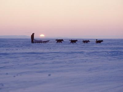 Alaska: Native Alaskan Moving on a Dog-Sled over the Ice, with the Midnight Sun in the Background