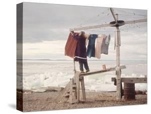 Alaskan Woman Hanging Her Laundry to Dry Along the Edge of an Ice Sheet by Ralph Crane