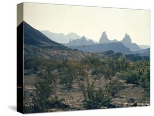 Great Chihuahua Desert with Chisos Mountains and Mt Amory at Big Bend National Park by Ralph Crane