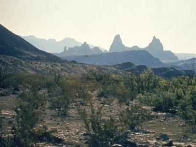 Great Chihuahua Desert with Chisos Mountains and Mt Amory at Big Bend National Park