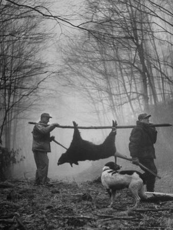 Jim Atchley and Dr. Ray Atchley Carrying Boar That They Killed