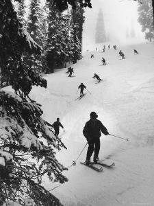 View of People Skiing at Steven's Pass by Ralph Crane