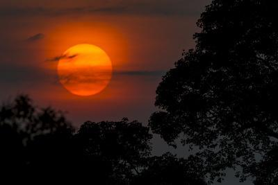 Brazil. A colorful orange sunset in the Pantanal.