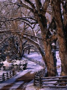 Country Road Leading to Nambe Ranch in Early Winter, New Mexico, USA by Ralph Lee Hopkins