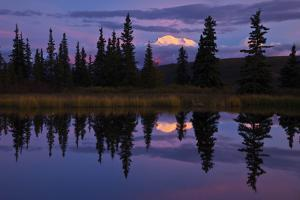 Tall Trees Reflected in a Pond with Mt. Mckinley in the Distance by Ralph Lee Hopkins
