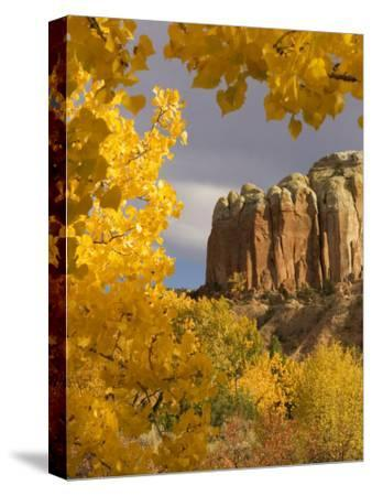 Yellow Leaves of Fall Frame a Rock Formation, Santa Fe, New Mexico, USA