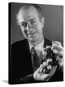 Dr. Linus Pauling Holding a Wooden Model of the Molecular Structure of Protein by Ralph Morse