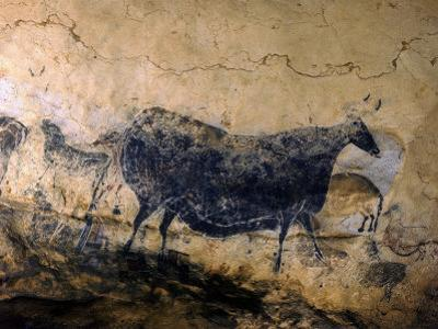 Lascaux Cave Drawing Depicting Steer, Circa 15,000 BC