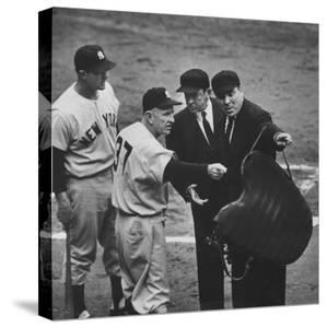 NY Yankee Manager Casey Stengel Arguing with Umpire in World Series at Ebbetts Field by Ralph Morse