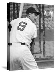 Ted Williams During Batting Practice by Ralph Morse