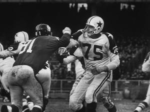The Dallas Cowboys in Light Jerseys, Playing Against the New York Giants, in Dark Jerseys by Ralph Morse