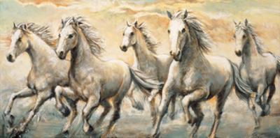 Wild Horses by Ralph Steele