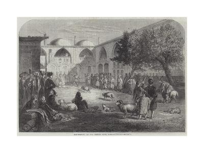 Ram-Fighting at the Persian Khan, Constantinople--Giclee Print