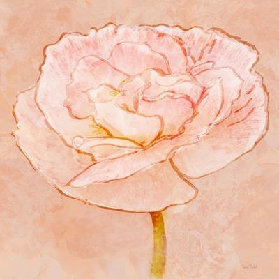 Sweet Peach Poppy II