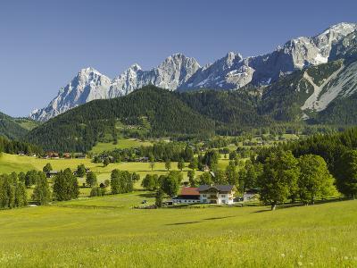 Ramsau, Dachstein, Summer Meadow, Styria, Austria-Rainer Mirau-Photographic Print