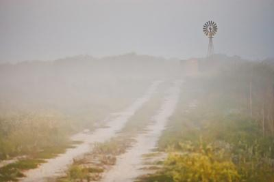 https://imgc.artprintimages.com/img/print/ranch-road-and-windmill-in-fog-texas-usa_u-l-pn69kg0.jpg?p=0