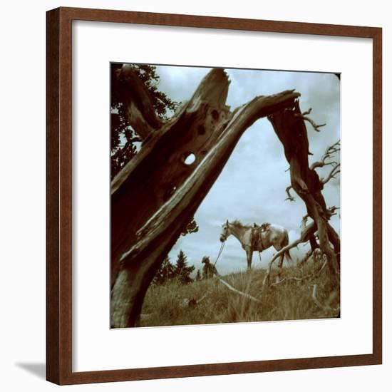 Rancher Leading Horse Across Field as Seen Through Branches of Fallen Tree, Trinchera Ranch-Loomis Dean-Framed Photographic Print