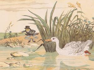 A Lily White Duck Gobbled Him Up by Randolph Caldecott