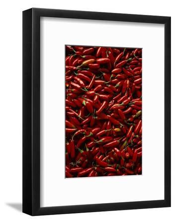 Abundance of Red Chilies