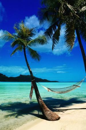 Hammock Hanging Seaside