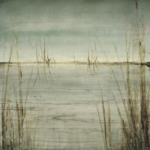 Blue Tranquility II by Randy Hibberd