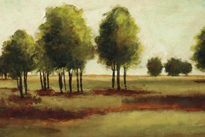 Luminous Landscape by Randy Hibberd