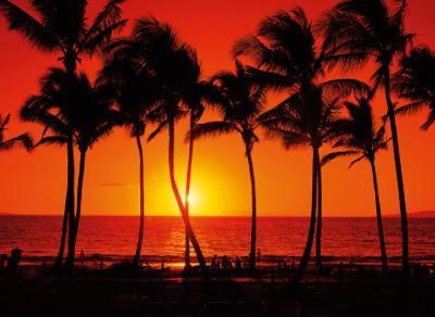 Red Hawaiian Sunset by Randy Jay Braun