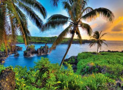 Where Da Coconuts Grow, Maui, Hawaii by Randy Jay Braun
