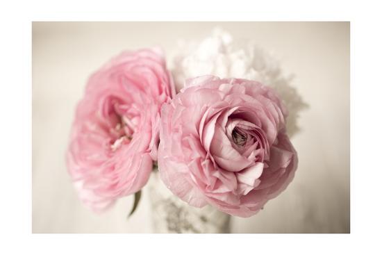 Ranuncula Pink Vase-Symposium Design-Giclee Print