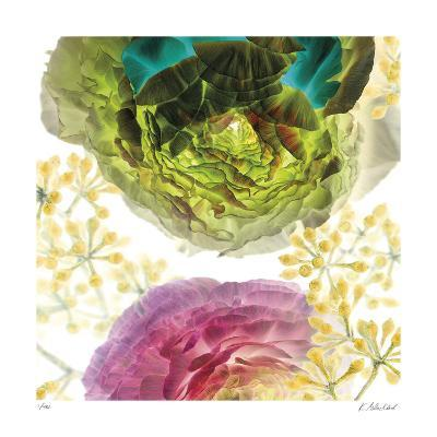 Ranunculus-Kate Blacklock-Giclee Print