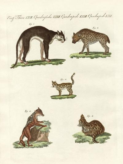 Rapacious Animals--Giclee Print