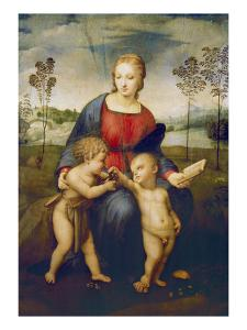 Madonna of the Goldfinch, about 1506 by Raphael