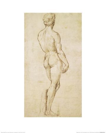 Michelangelo's David by Raphael