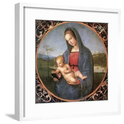 The Madonna Conestabile, 1502-1503
