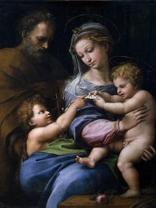 The Madonna of the Rose (Madonna Della Ros), C. 1520 by Raphael