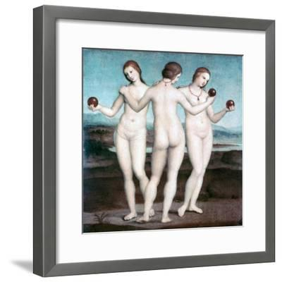 The Three Graces, 1504-1505