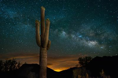 Saguaro Cactus and Milky Way by raphoto
