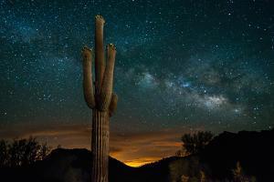 Saguaro Cactus and Milky Way by raphoto