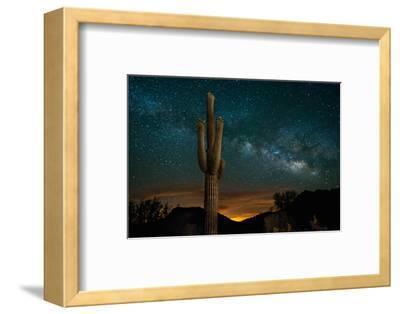 Saguaro Cactus and Milky Way
