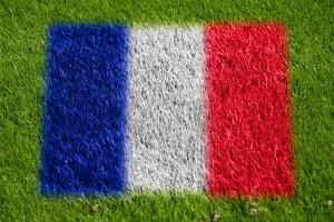 Flag of France on Grass by raphtong