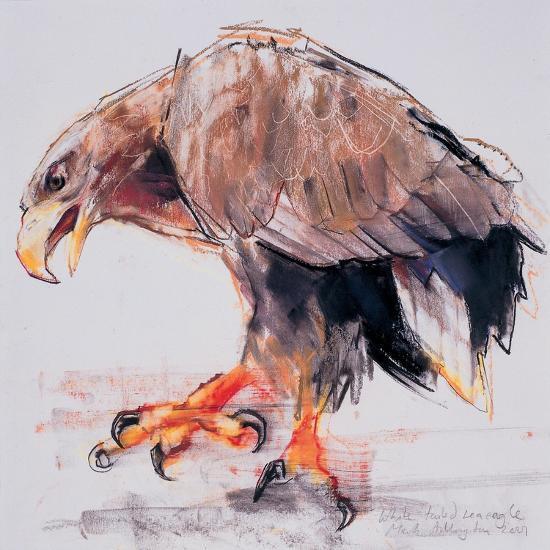 Raptor, 2001-Mark Adlington-Giclee Print