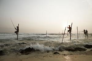 Stilt fisherman in Sri Lanka by Rasmus Kaessmann