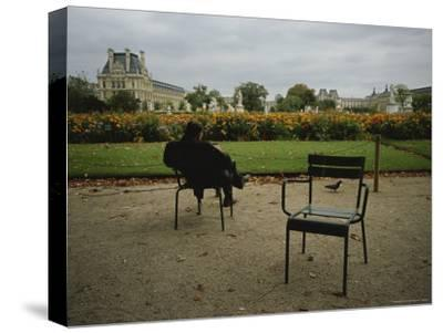 A Man Reads in the Tuileries Gardens