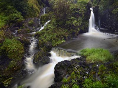 A Waterfall on Maui Island by Raul Touzon