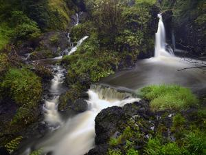 A Waterfall on Maui Island by Raul Touzon