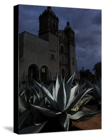 Agave Plant and the Church of Santo Domingo at Night by Raul Touzon