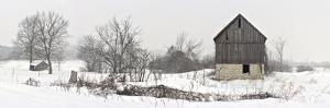 An Old Barn on Howe Island in Winter by Raul Touzon